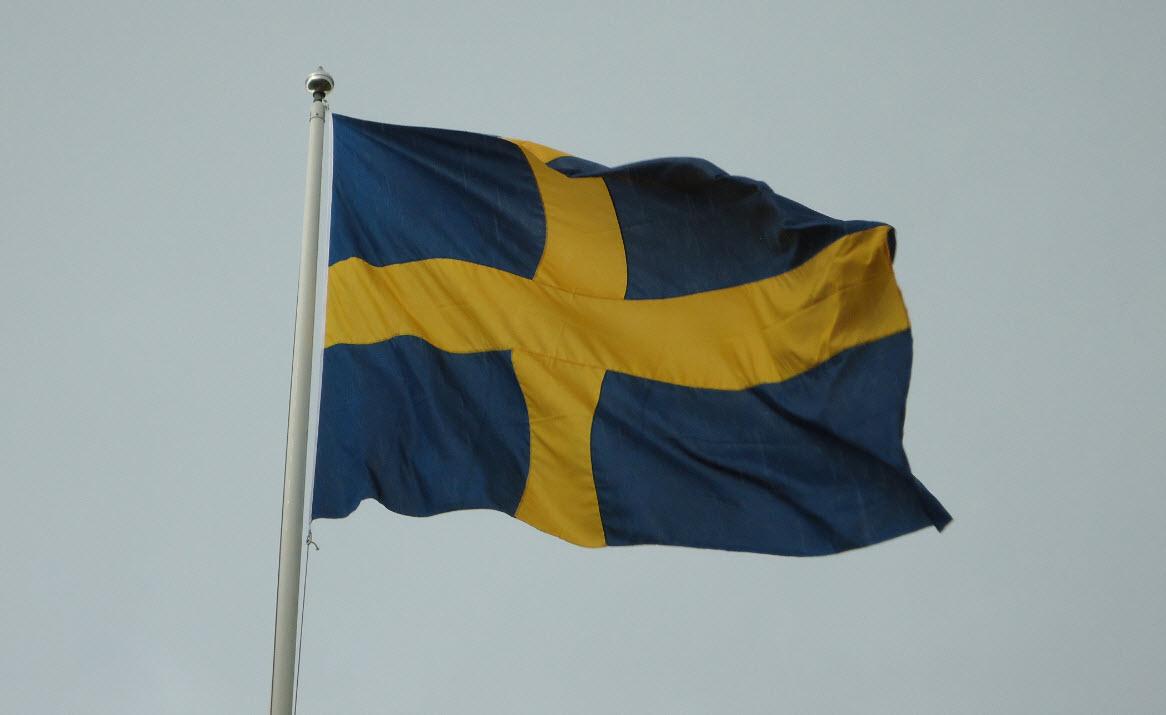Flagga Karleken Till Och Varnandet Av Sverige Aktion For